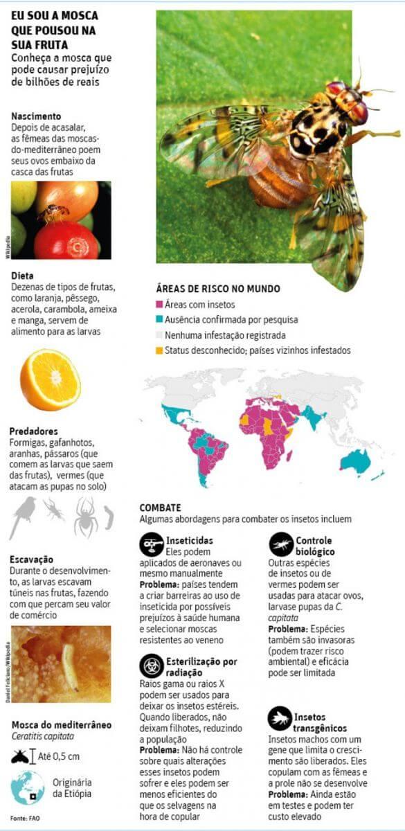 promip manejo integrado de pragas controle biologico empresa biotecnologia vender moscas transgenicas brasil (1)