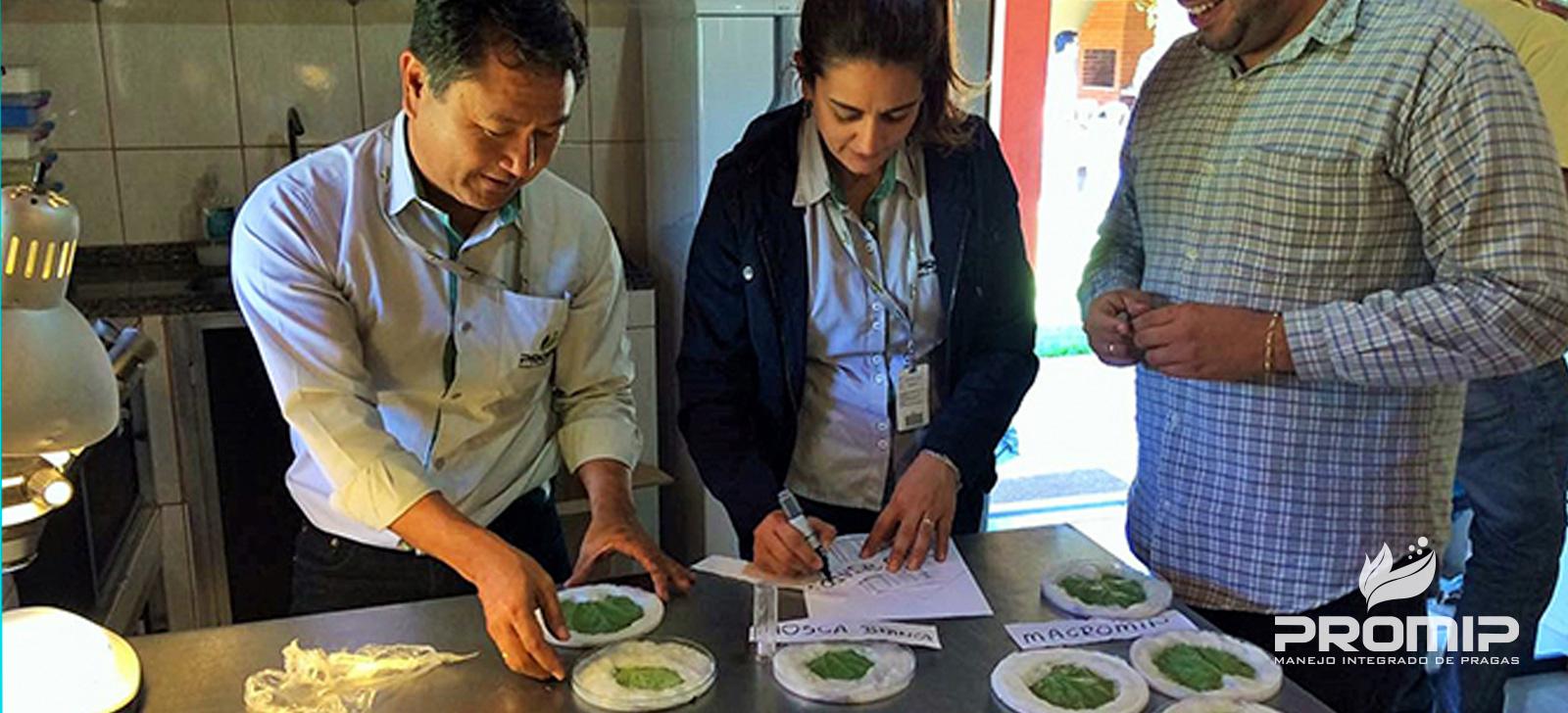 promip manejo integrado de pragas controle biologico tranferencia conhcimento promip
