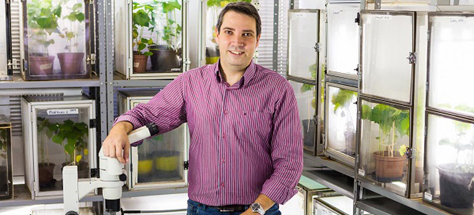 promip manejo integrado de pragas controle biologico desempenho destaque startups apoiadas pela FAPESP