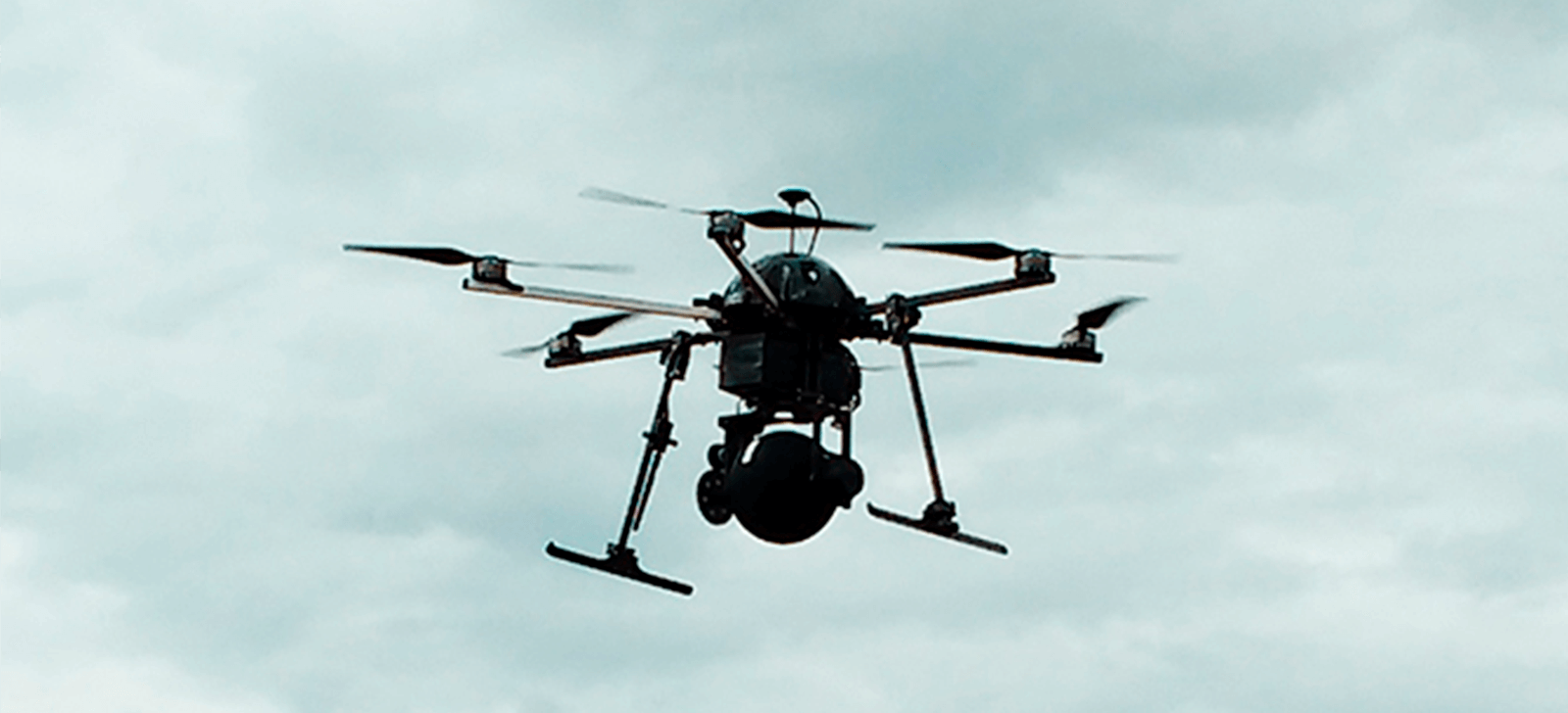promip manejo integrado de pragas controle biologico monitoramento e o uso de biologicos melhor caminho para o manejo de helicoverpa armigera nas area