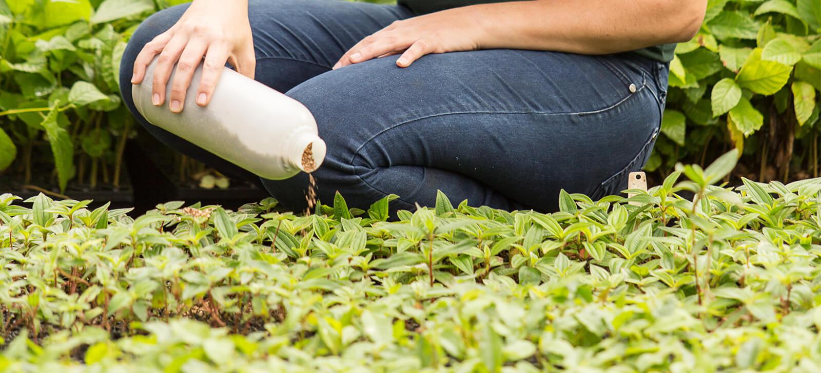 Controle Biológico Aplicado é Destaque em Simpósio do Agronegócio que acontecerá em Holambra