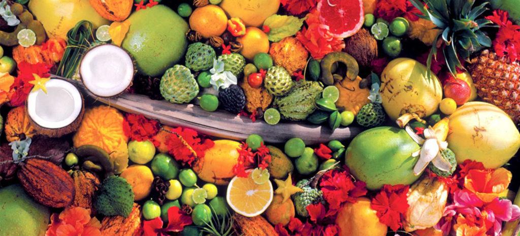 conheça as solucoes biologicas promip no simposio de frutacultura tropical que acontecera na unesp jaboticaba
