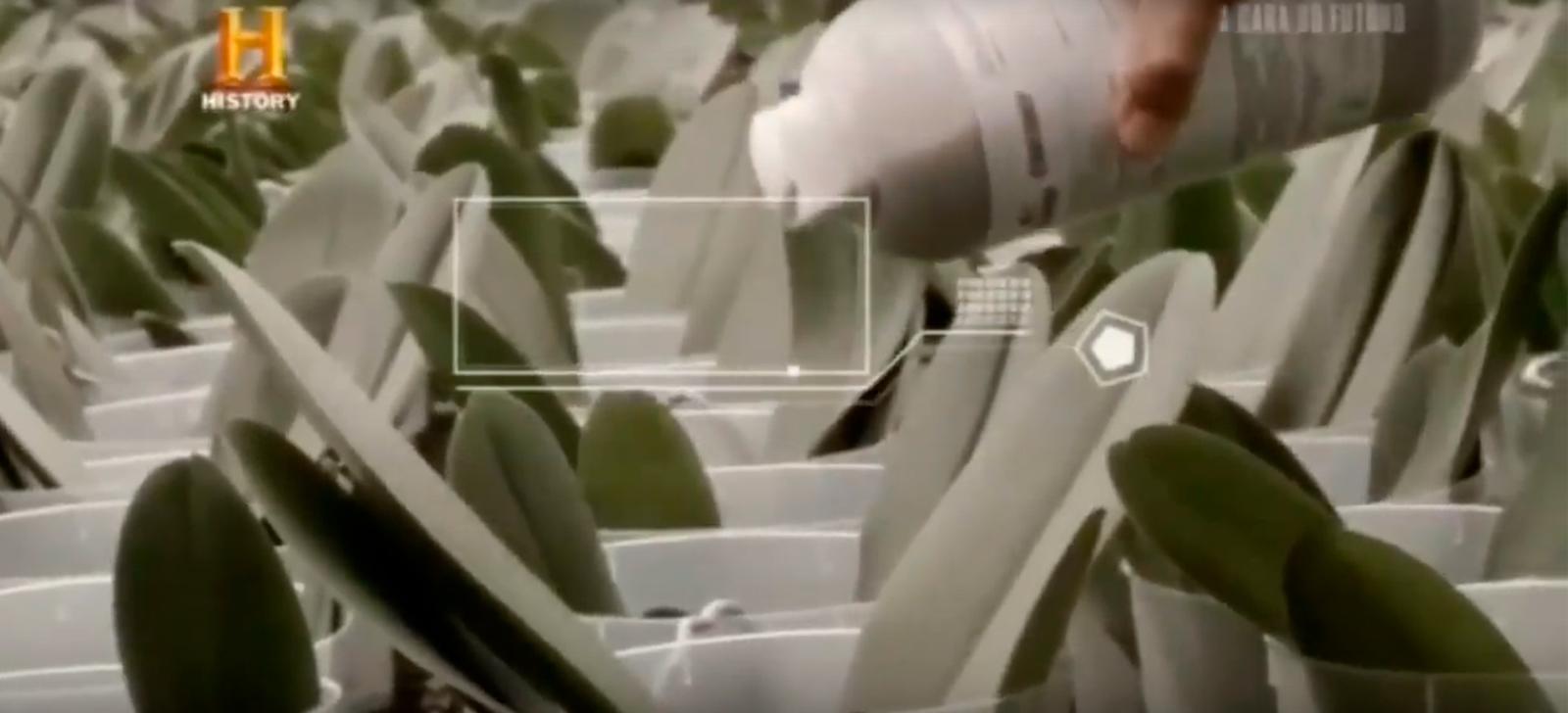 Programa do History Channel destaca a tecnologia desenvolvida pela PROMIP em controle biológico de pragas