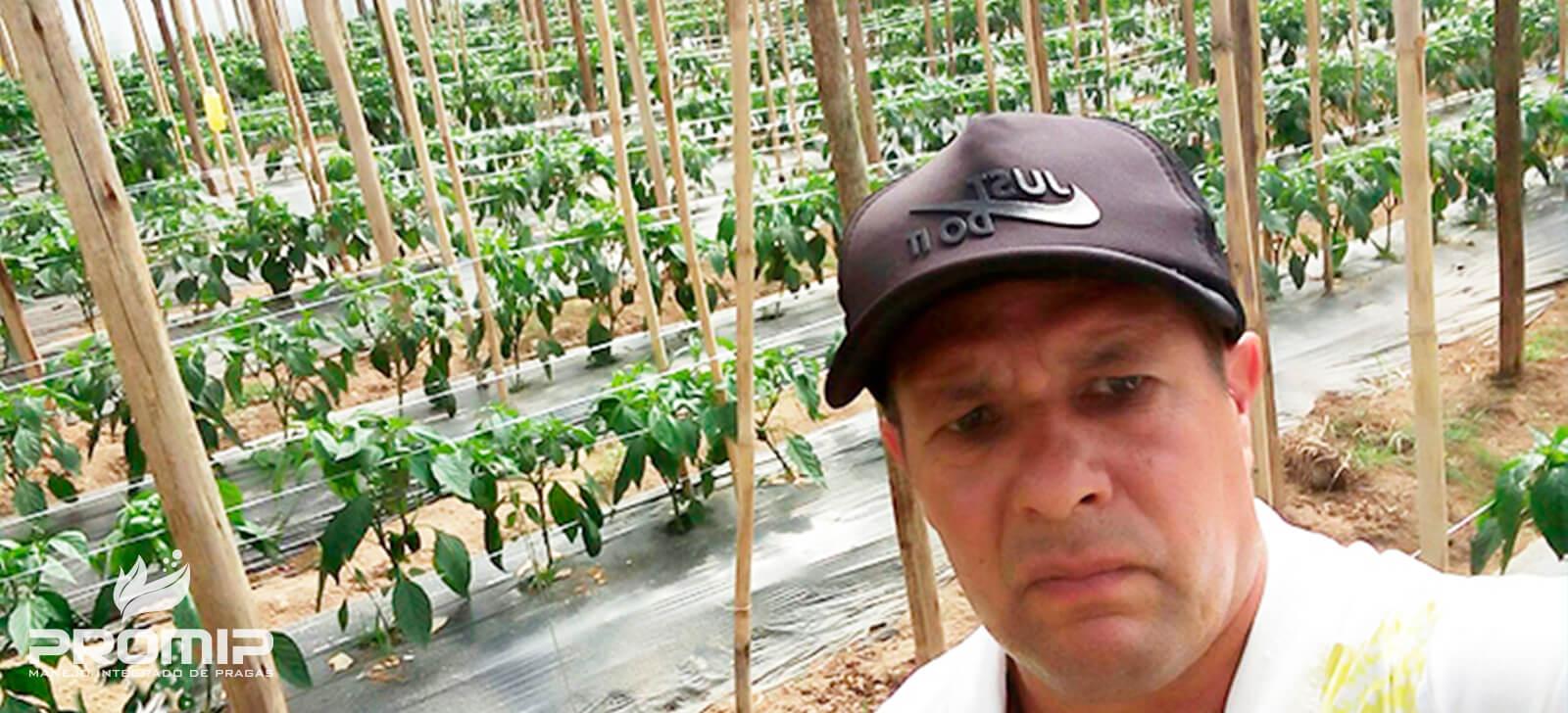 promip manejo integrado de pragas controle biologico agricultores reconhecem na pratica beneficios do controle biologico culto do pimentao (1)
