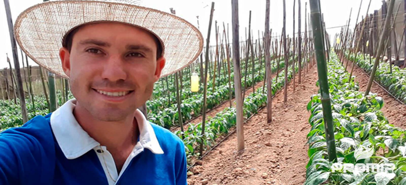 promip manejo integrado de pragas controle biologico agricultores reconhecem na pratica beneficios do controle biologico culto do pimentao (2)