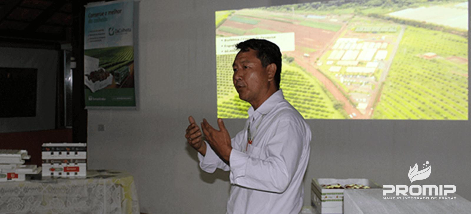 promip manejo integrado de pragas controle biologico inovacoes promip sao apresentadas para produtores de morango no sul de minas gerais final