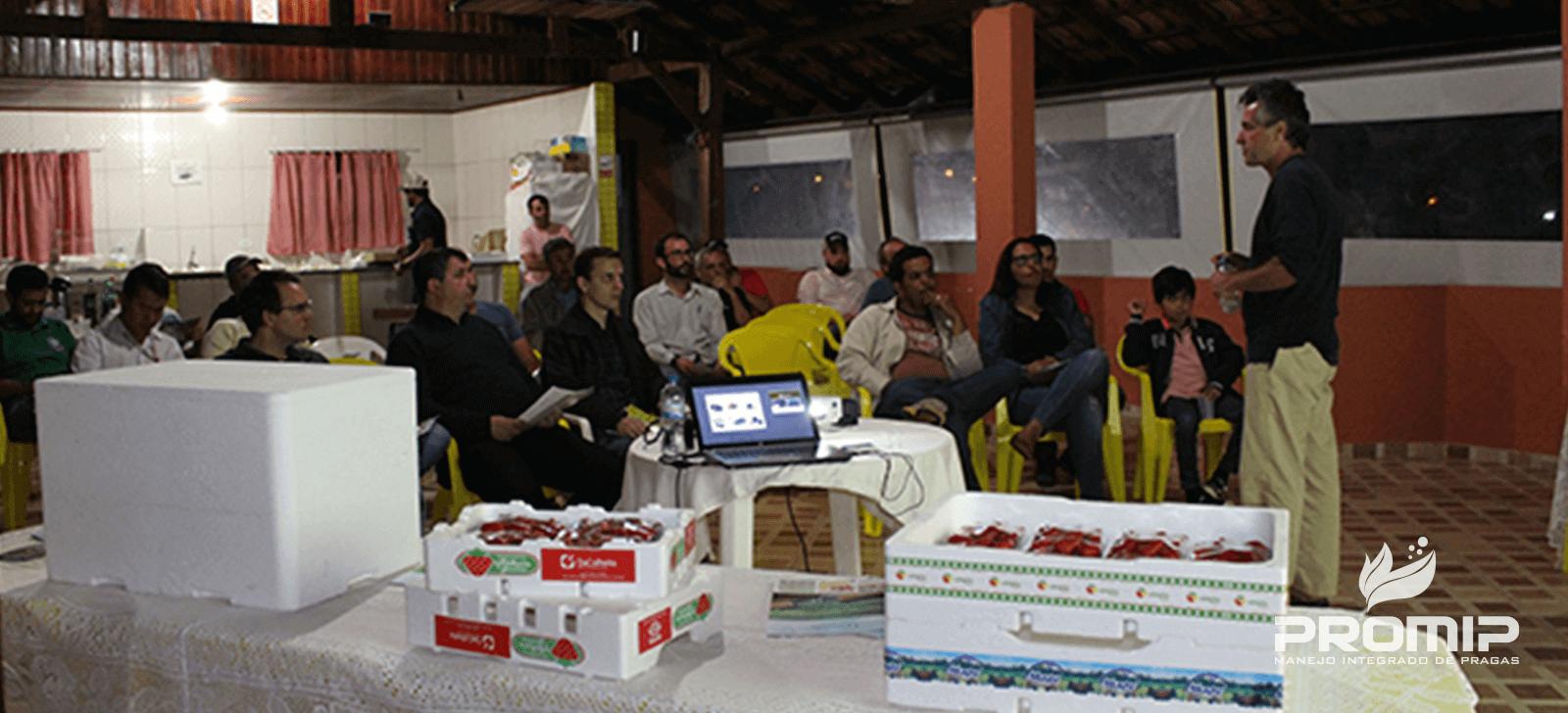 promip manejo integrado de pragas controle biologico inovacoes promip sao apresentadas para produtores de morango no sul de minas gerais final2