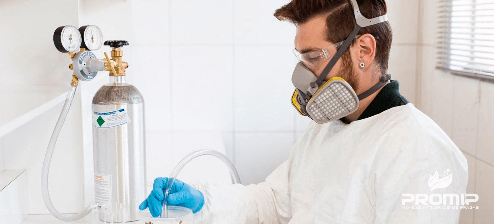 promip manejo integrado de pragas controle biologico resistencia de pragas a Inseticidas o mip unica saida para vitar esse problema 1