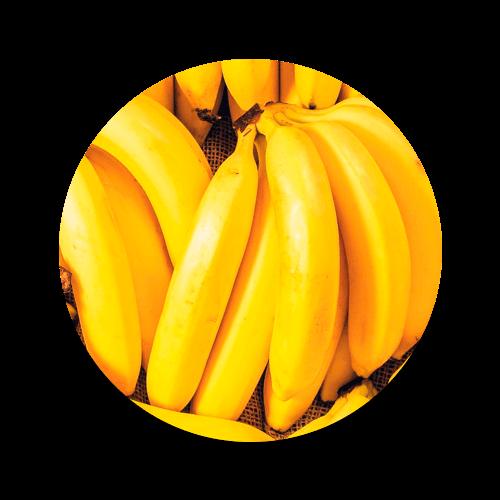 promip controle biologico manejo integrado de pragas icone cultura banana