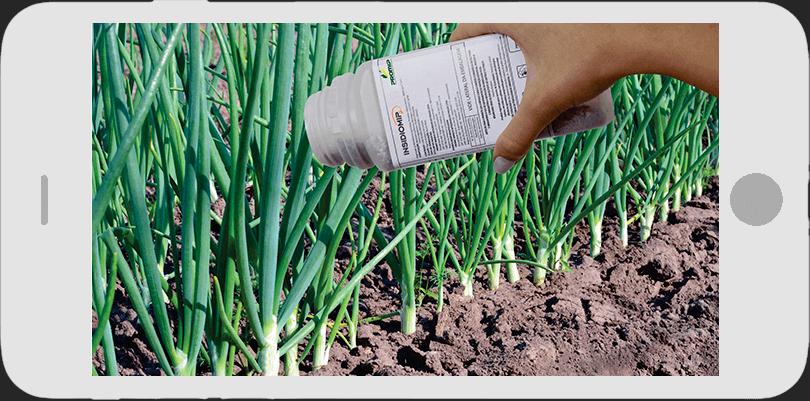 promip controle biologico manejo integrado de pragas thumbnail video insidiomip como usar