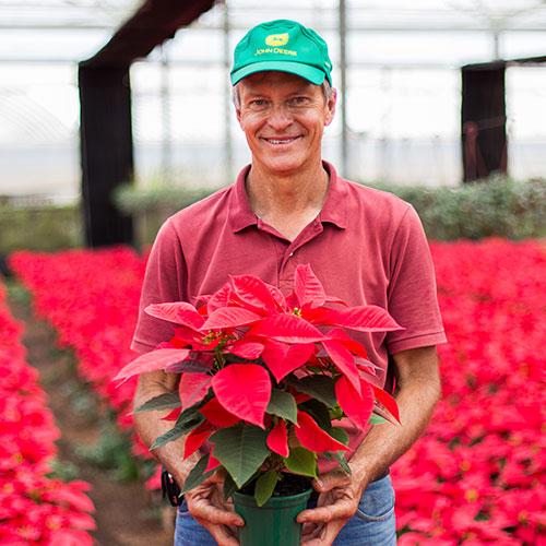 promip depoimento produtos paulo kievtsbosch fazenda poliagri flores e plantas holambra sp