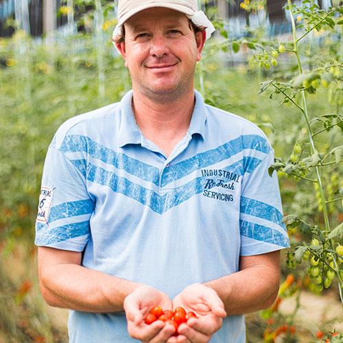 promip depoimento produtos pieter fransoo victoria tomates holambra sp