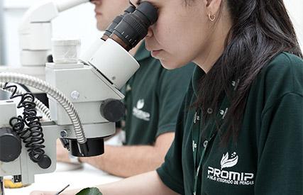 promip manejo integrado pragas controle biologico servico manejo resistencia praga mobile