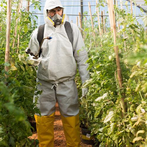 promip manejo integrado pragas controle biologico servicos eficacia praticabilidade agronomica 4