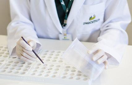 promip manejo integrado pragas controle biologico servicos estudos organismos geneticamnete modificados mobile