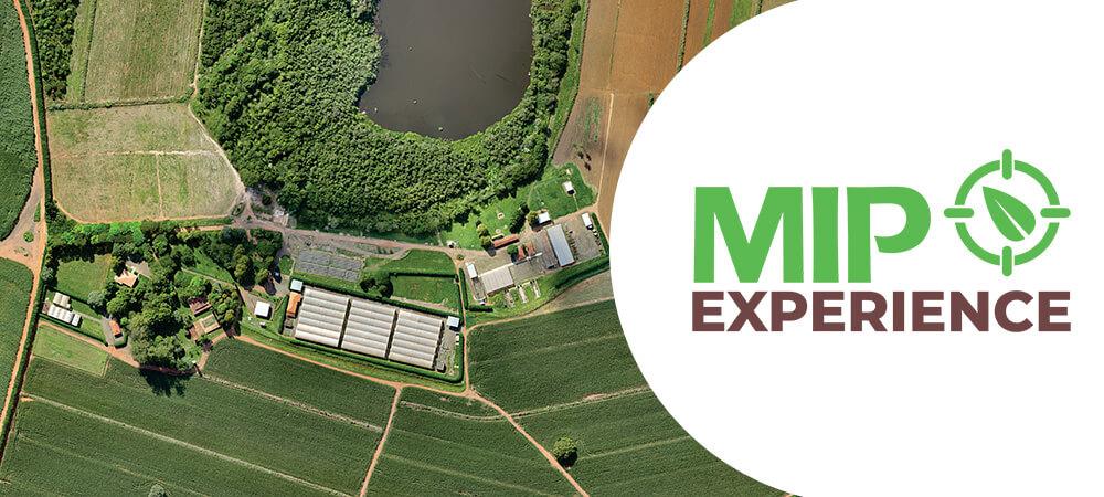 promip manejo integrado pragas controle biologico mip experience artigo aprendendo fazendo centro inovacoes mobile