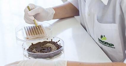 promip manejo integrado de pragas controle biologico preservacao polinizadores mip mobile