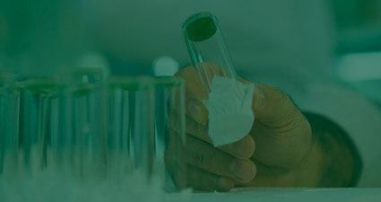 promip manejo integrado pragas controle biologico mip experience resistência mosca branca inseticidas header mobile